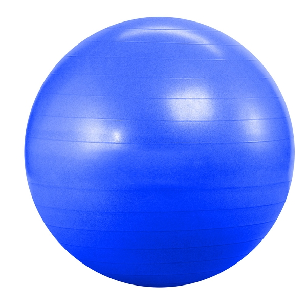 55cm Anti Burst Deluxe Yoga Ball – Silver